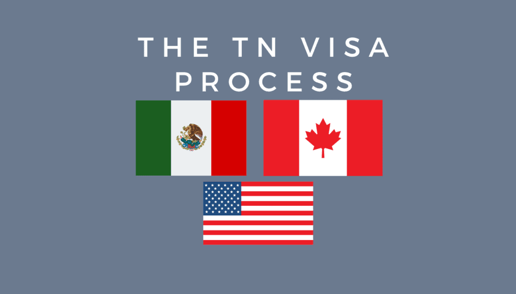 the tn visa process